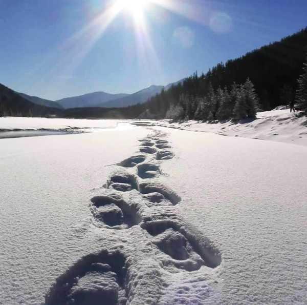 Безопасност при преходи със снегоходки
