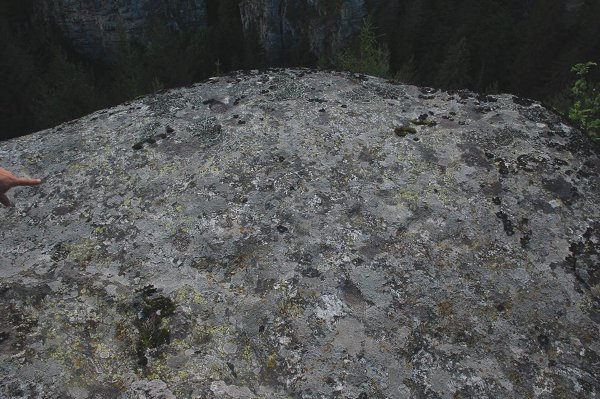 Ситовската промушвачка и Жувачната скала