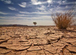 Промените в климата се забързват