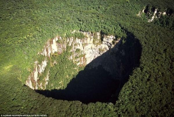 Rainforest sinkhole