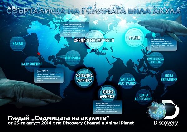 Shark_Week_Infograph_1