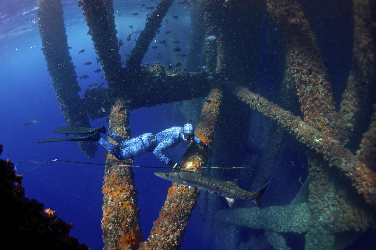 Свибодно гмуркане - Мексикански залив