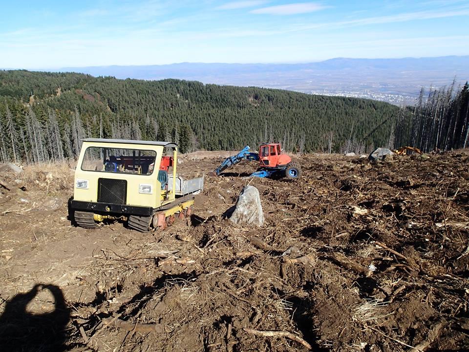 20 декара витошки гори бяха унищожени