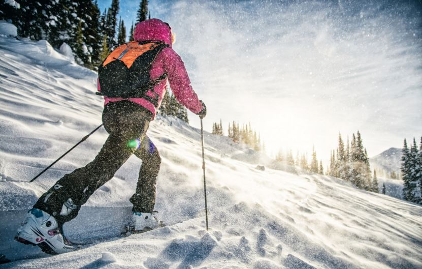 Ски туринг, панти