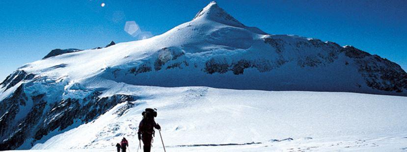 Винсън (4892 м). Снимка: alpineascents.com