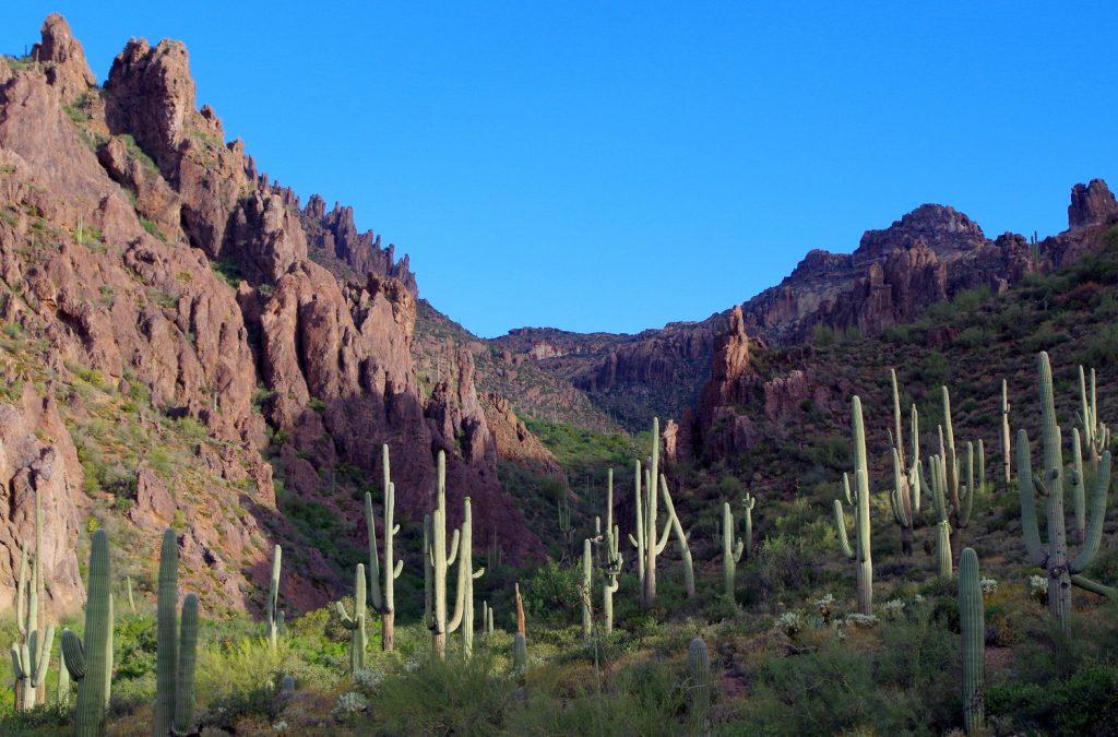 Из Планините на Суеверията, Аризона Superstition Mountains, Arizona