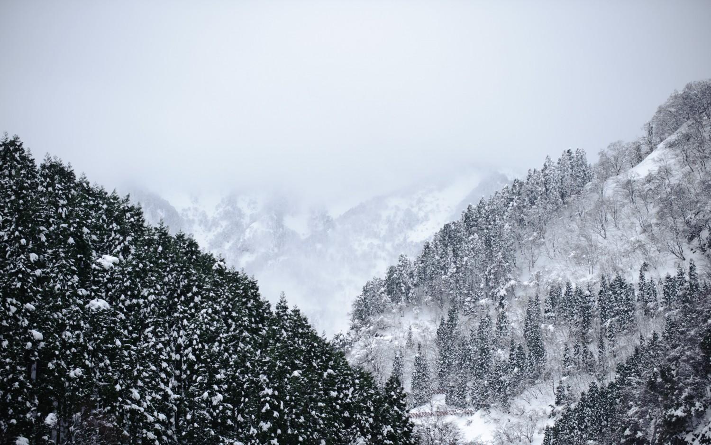 Снежна планина