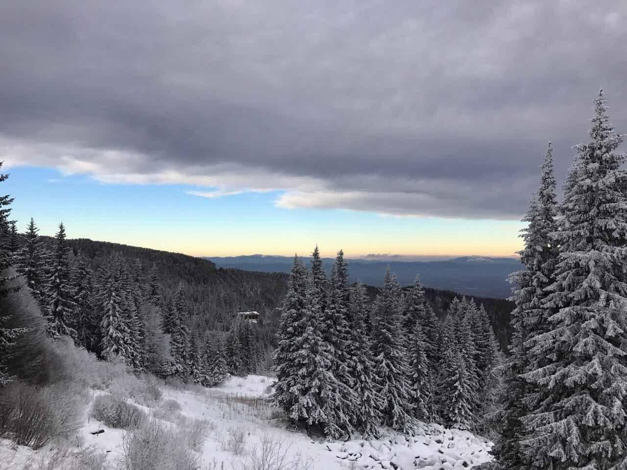 витоша ски пейзаж