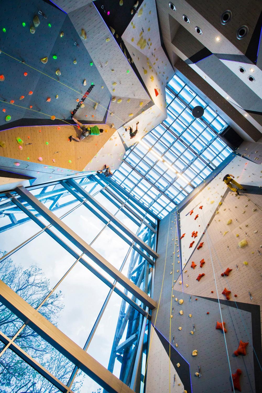 Walltopia Climbing & Fitness