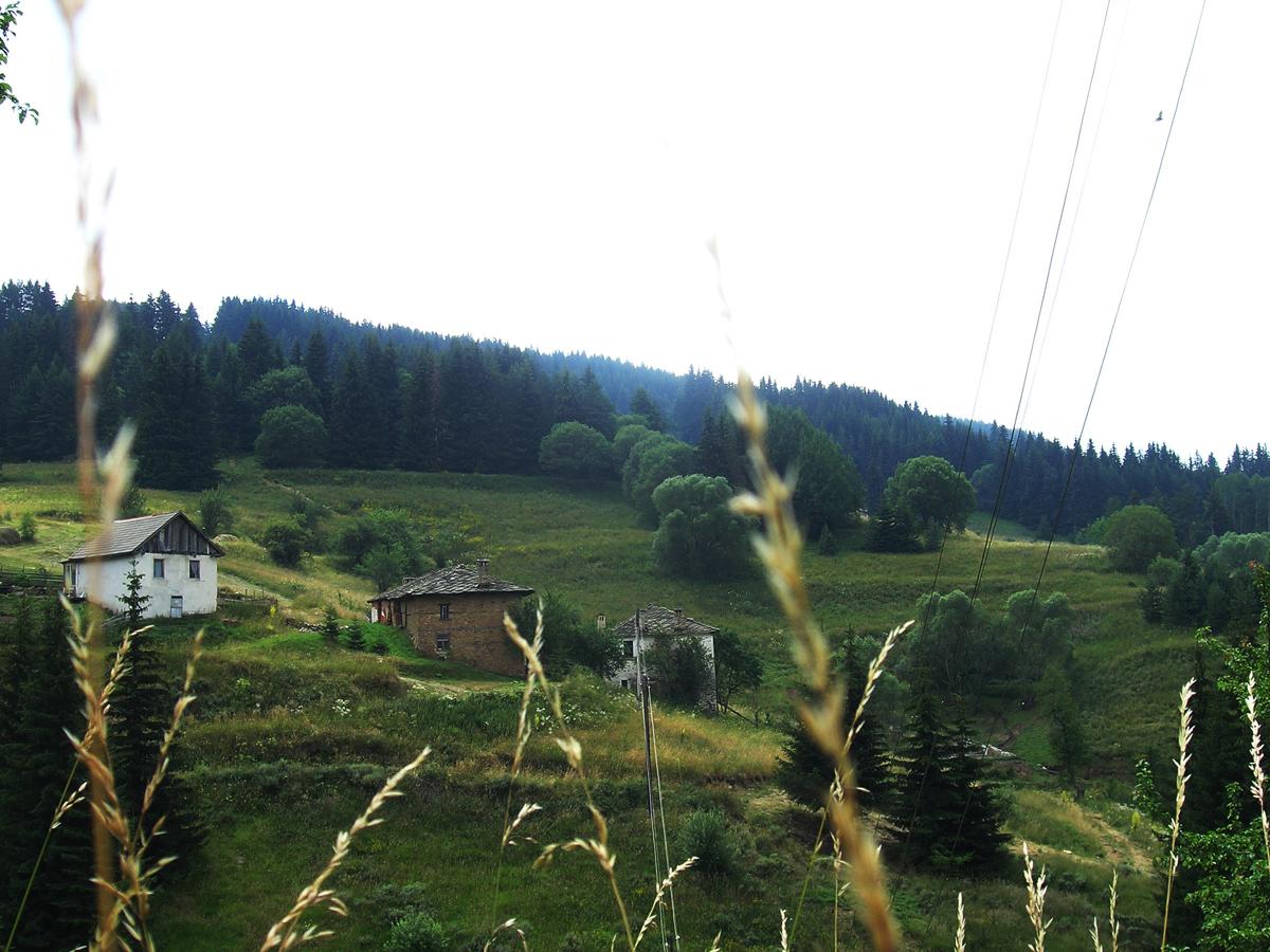 Родопи планина