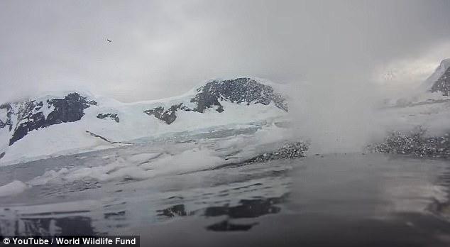 Под водата с очите на кит