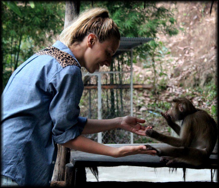Кайт в Тайланд