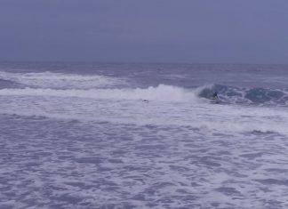 Сърфът в България