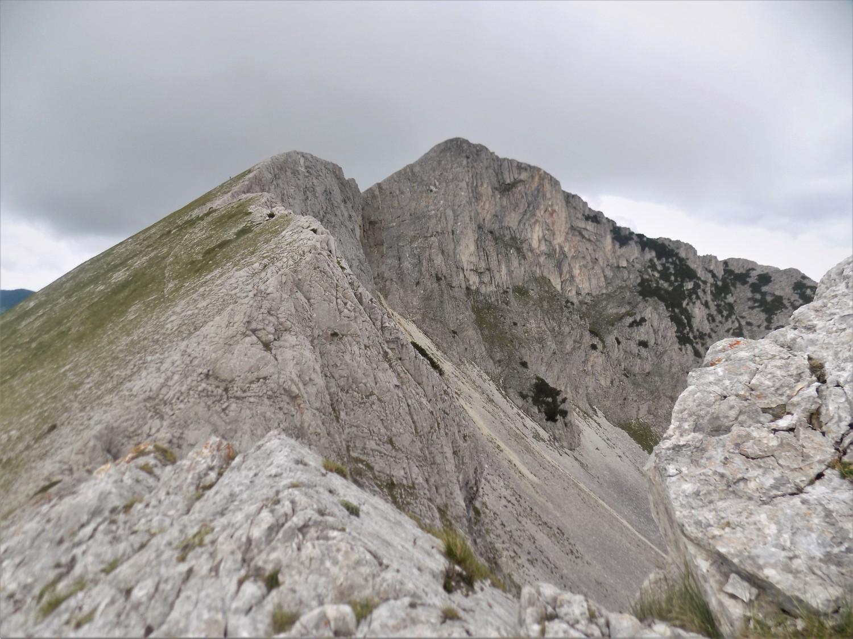 връх Синаница