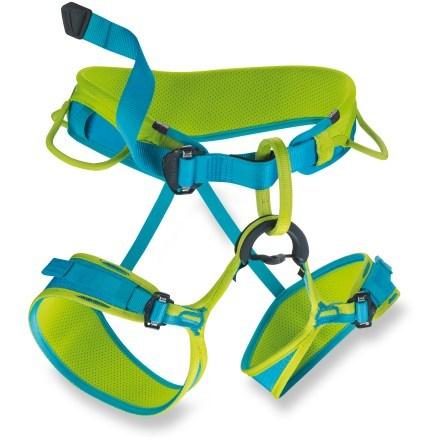 Jayne II climbing harness