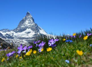 Международен ден на планината