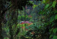 Roldanillo, Valle de Cauca снимка: Ира Кюрпанова