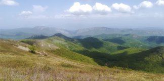 връх Руй