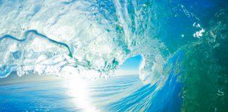 Световен ден на океаните
