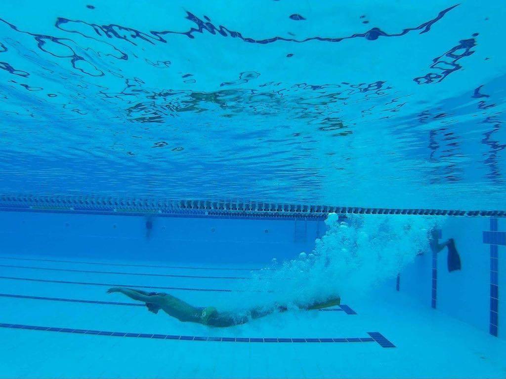 """Състезание по плуване """"Златния делфин"""""""