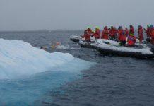 Петър Стойчев победител на първото състезание по плуване в Антарктида