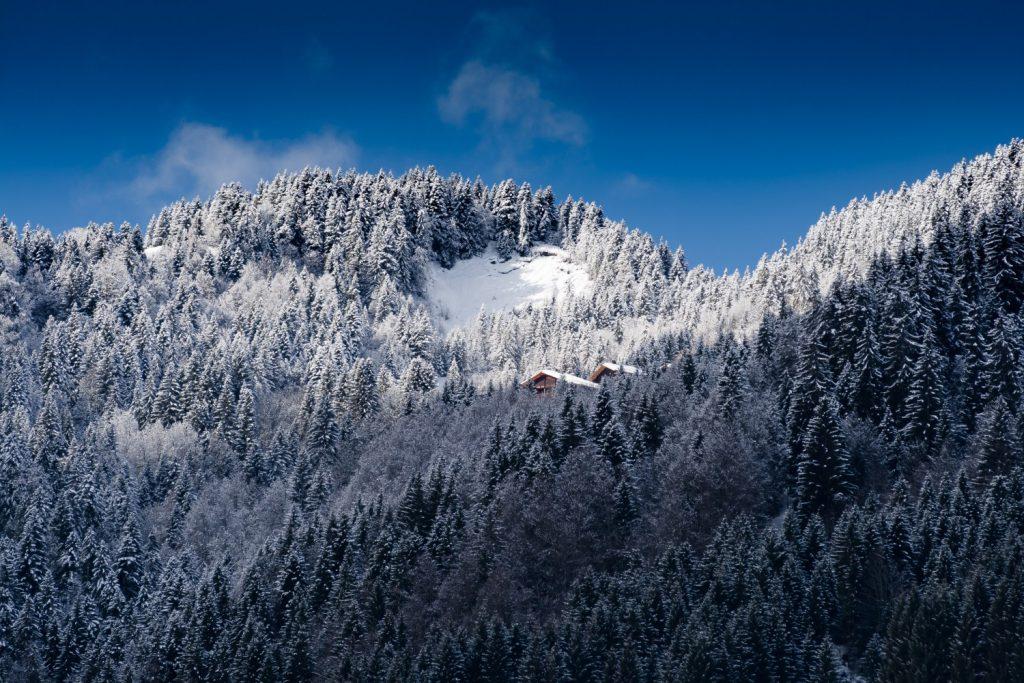 Планина, сняг