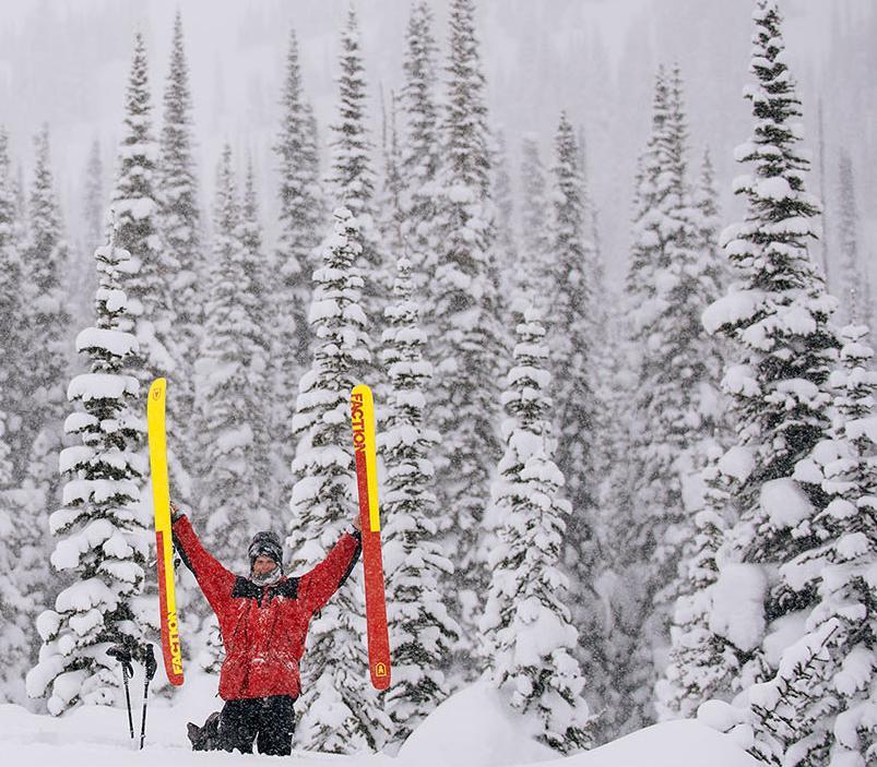Ски Faction