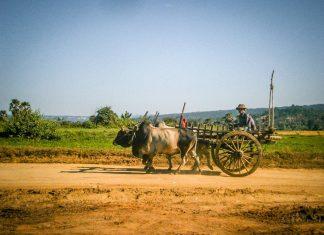 Бурмийски дни