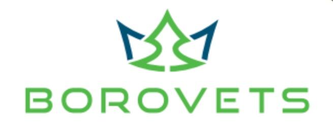Borovets