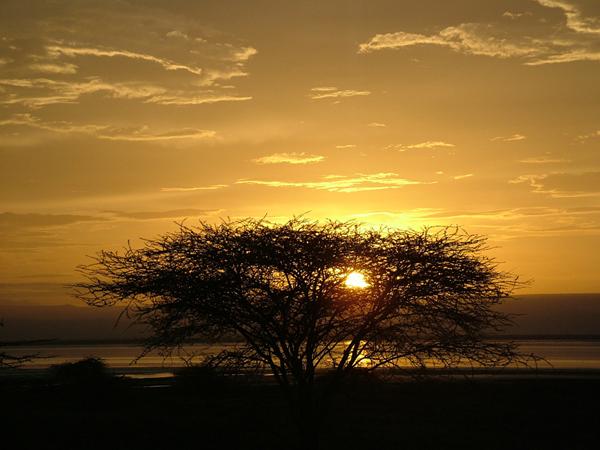 lovely african sunset