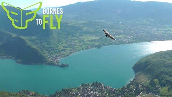 BORNES TO FLY 2013