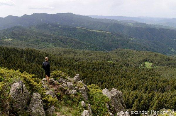 От връх Модър към Персенк