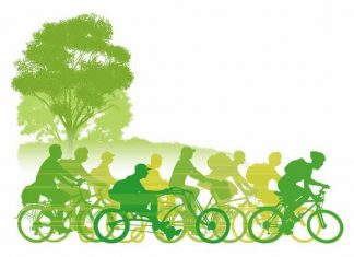 Зелена идея