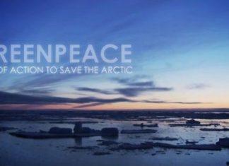 Спаси Арктика
