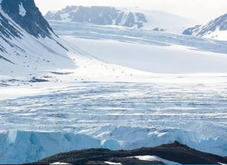 """Изложба """"Арктика - красива и уязвима"""""""