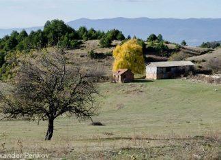 Мистичният планински дял Дъбраш в Западни Родопи