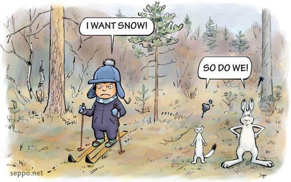 Сняг за размисъл