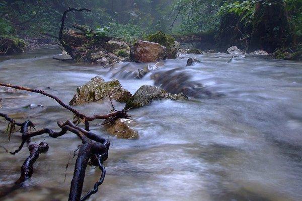 Реките на Западна България