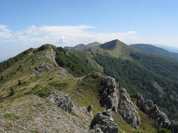 Снимка: kopran.snimka.bg