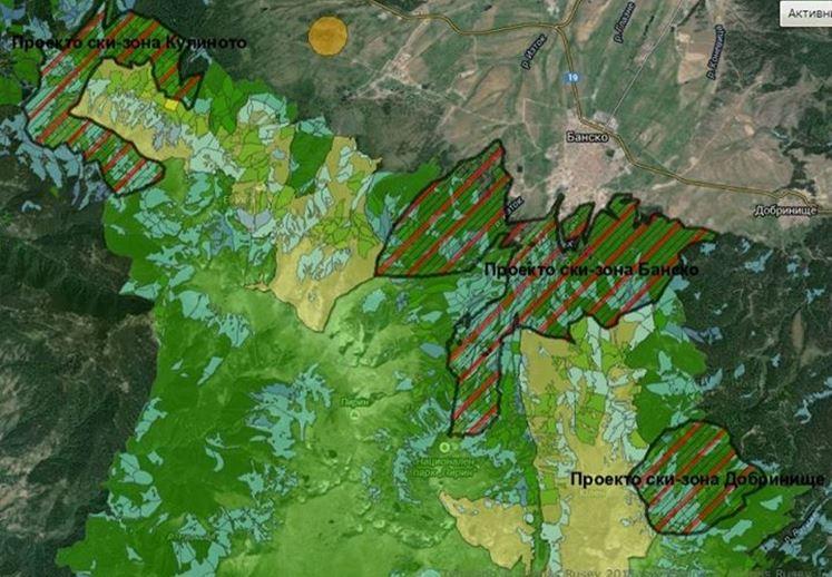 Вековни гори в Пирин, WWF