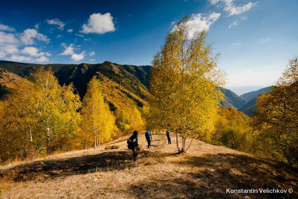 Фотограф: Константин Величков