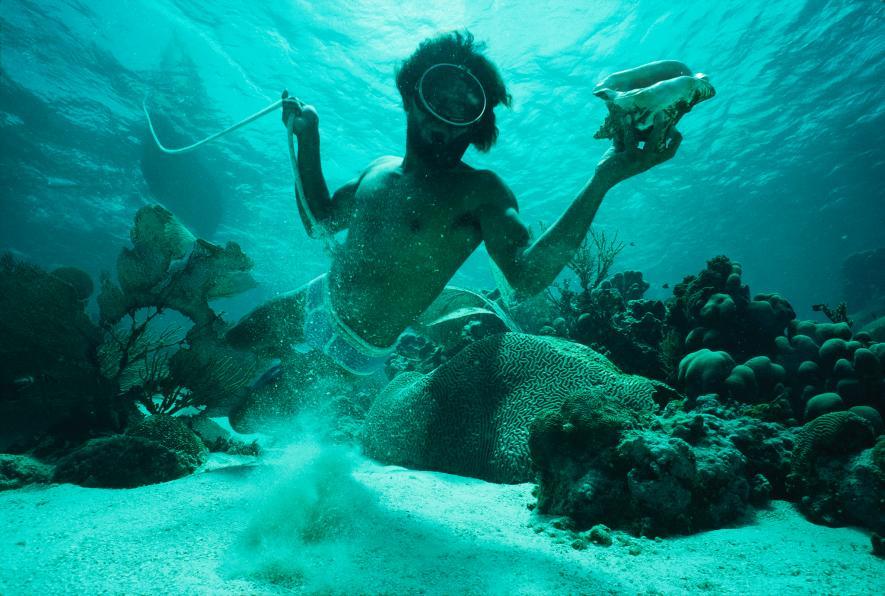 Снимки на седмицата - Котън Коулсън - Карибско море