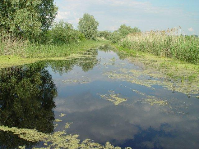 Дивият Дунав на Тутракан