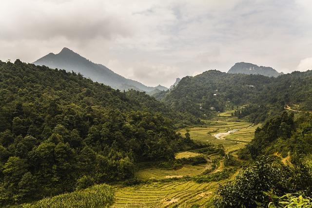 vietnam-599201_640
