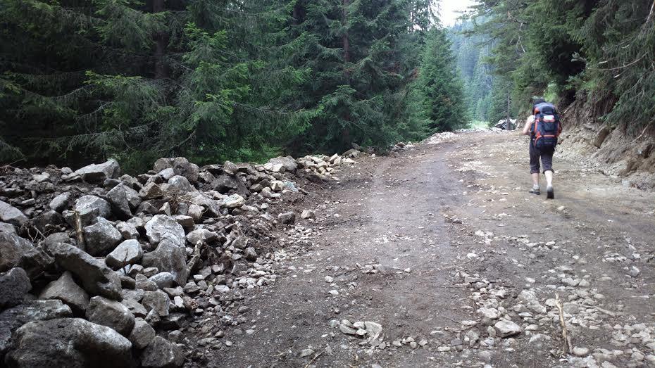 Пътят към Демяница