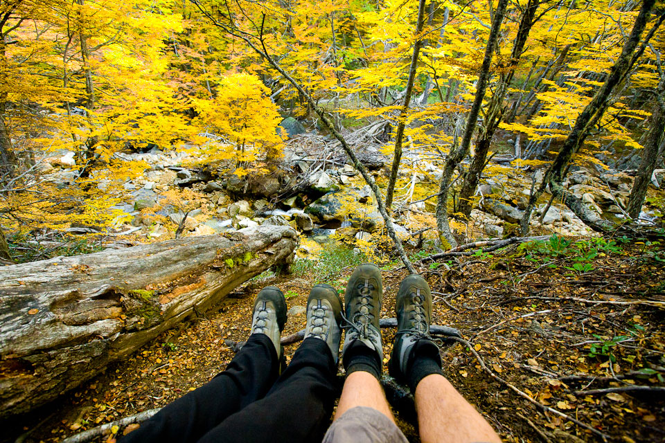 Планина, есен