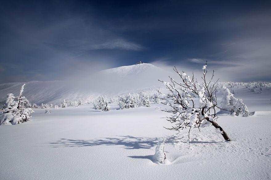 Замръзнала земя