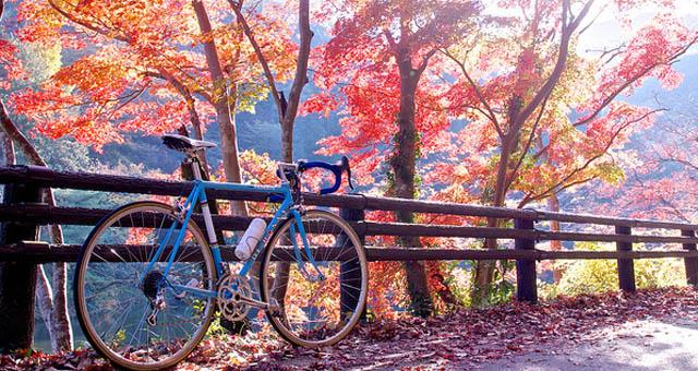 Есен, колело