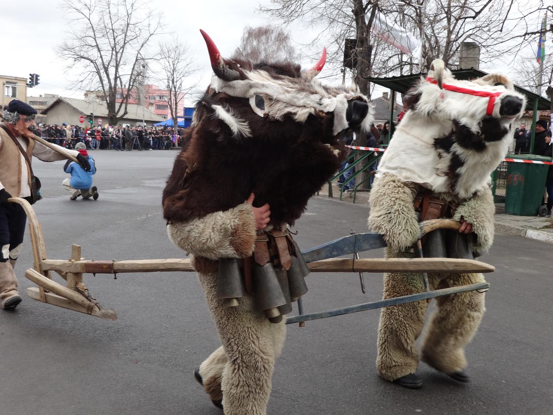Кукерски карнавал в Челопеч