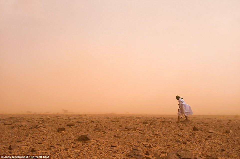 През Сахара с товарен влак